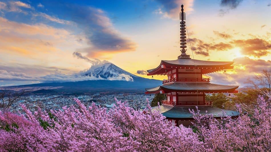 Die Geschichte der Haartransplantation: Japan, USA und Europa
