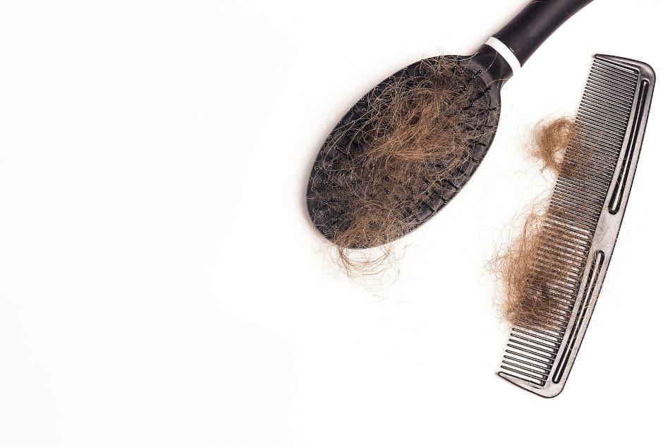 Die Haarausfall Forschung geht aktiv gegen Haarausfall mit Kamm und Bürste vor